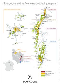 Telechargement Vins De Bourgogne
