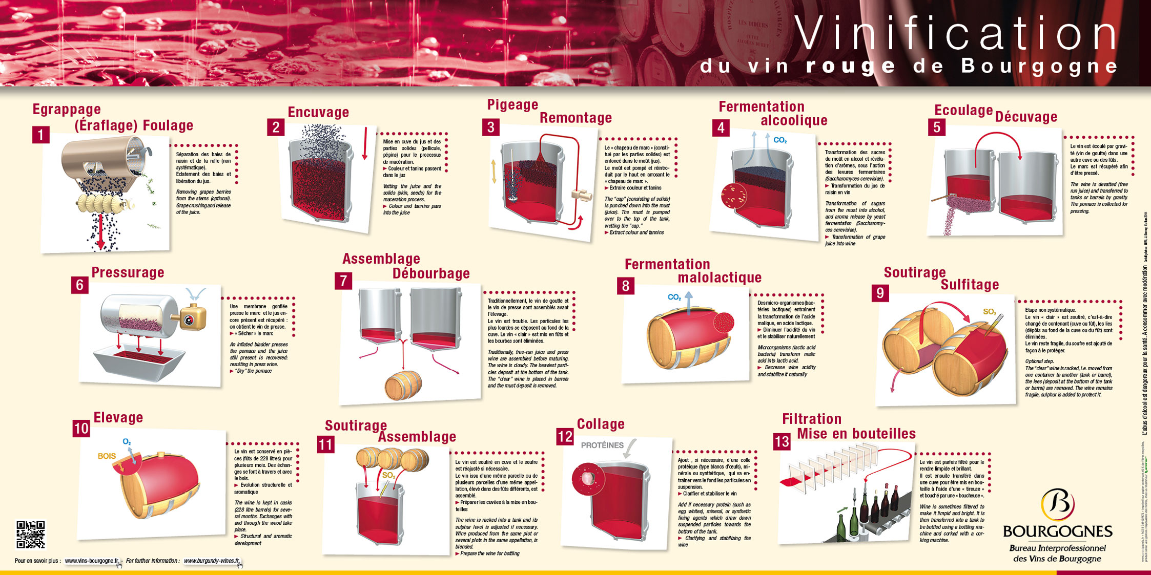 en presentation vinification red wines