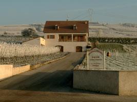 Domaine dessendre marie anne et jean claude viticulteur saint maurice les couches - Saint maurice les couches ...