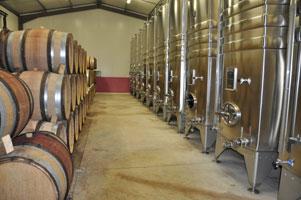 photo Domaine des Chenevieres Bourgogne Passetoutgrains