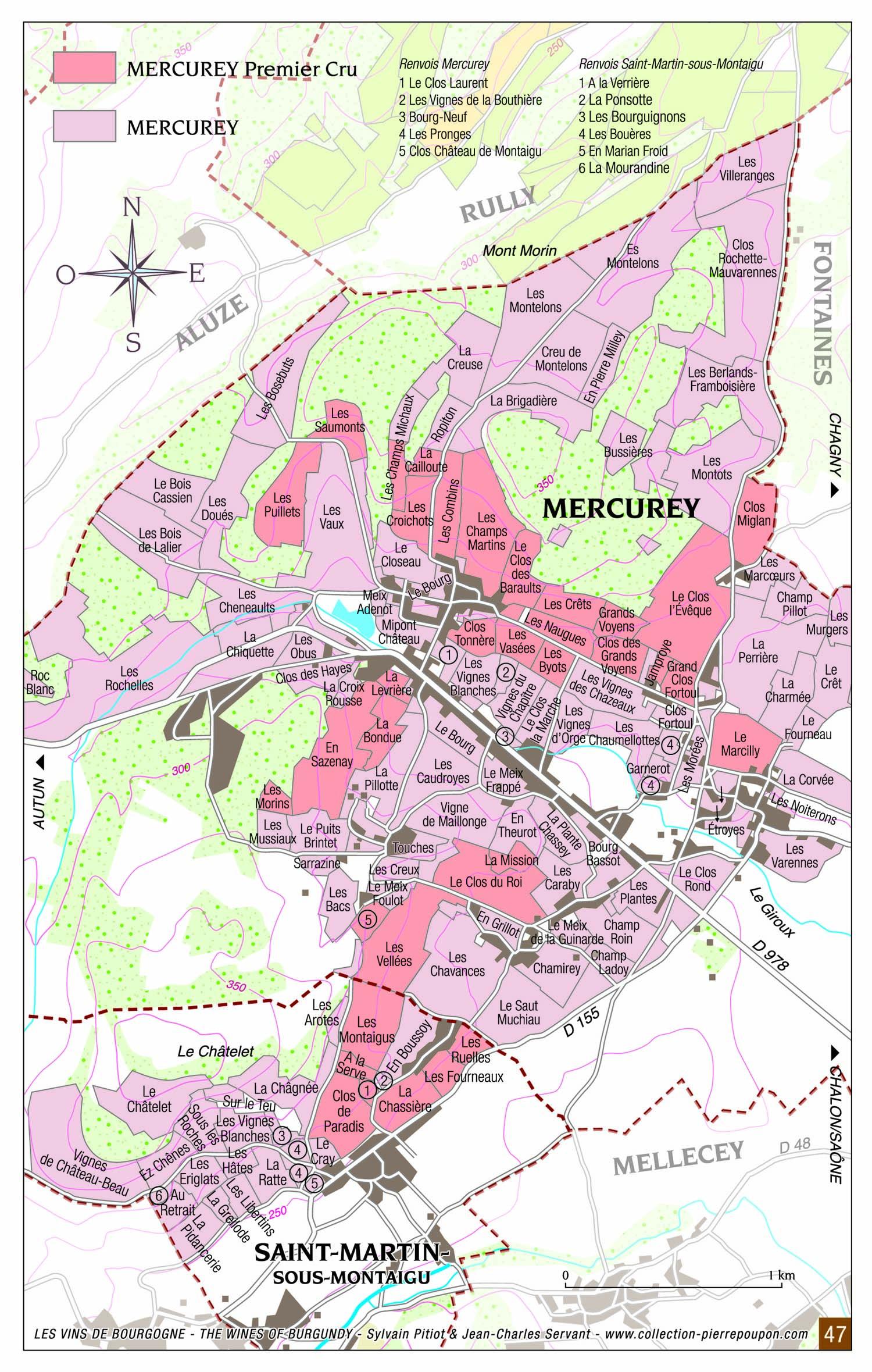 Mercurey - Vins de Bourgogne