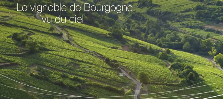 Photo Le vignoble de Bourgogne vu du ciel
